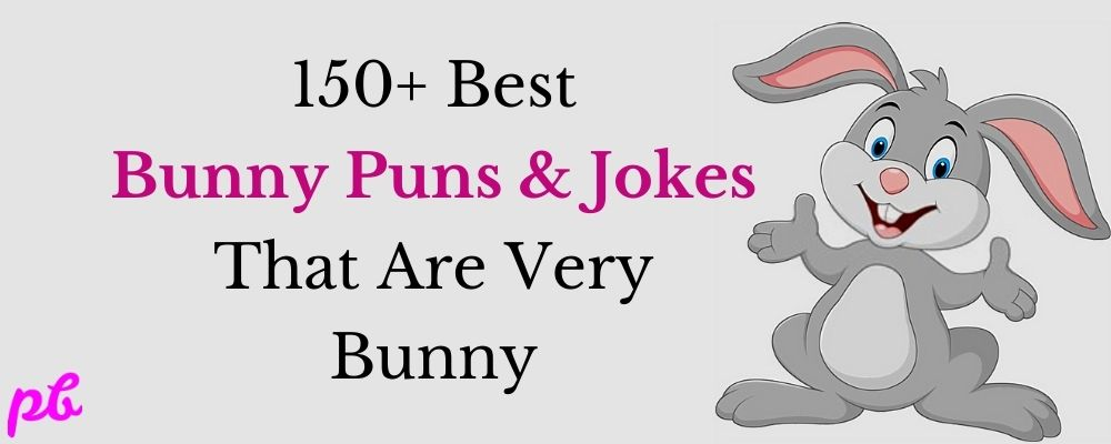 150+ Best Bunny Puns & Jokes That Are Very Bunny