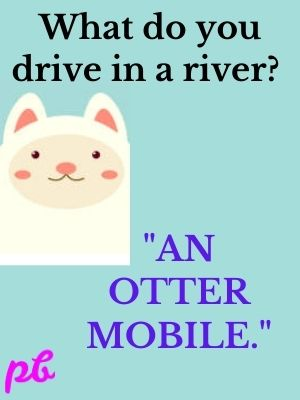 An otter-mobile.