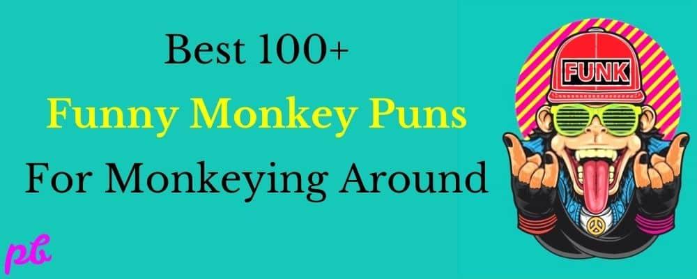 Best 100+ Funny Monkey Puns