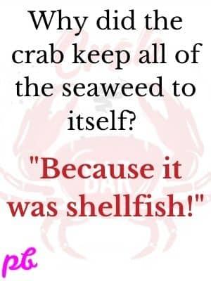 Best Crab Puns Question Answer
