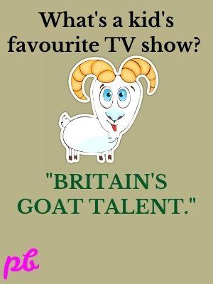 Britain's Goat Talent.