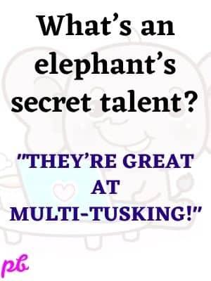 Funny Elephant Puns