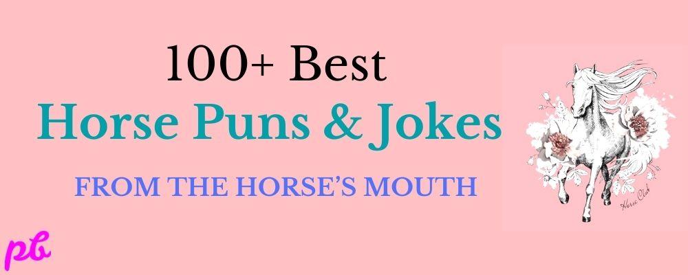 Horse Puns & Jokes