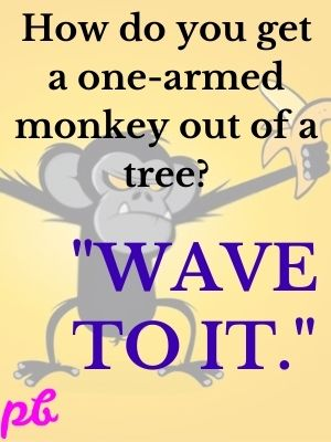 How do you get a one-armed monkey out of a tree Wave to it.