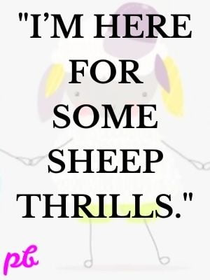 """I'm here for some sheep thrills."""