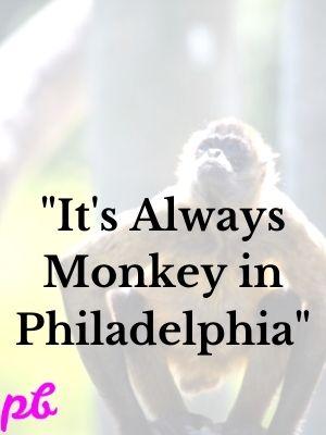 It's Always Monkey in Philadelphia