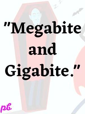 Megabite and Gigabite