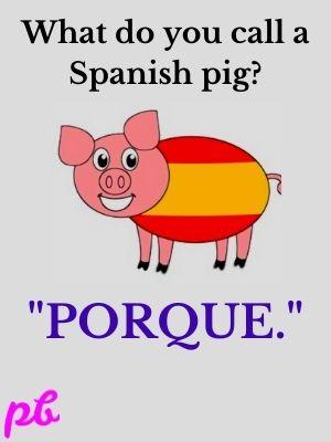 What do you call a Spanish pig Porque.