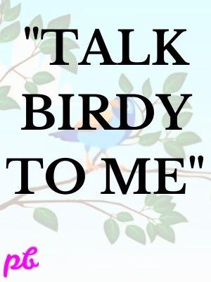 Talk birdy to me