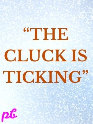 """""""The cluck is ticking"""""""