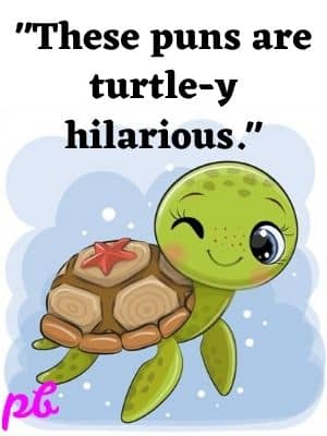 These puns are turtle y hilarious.