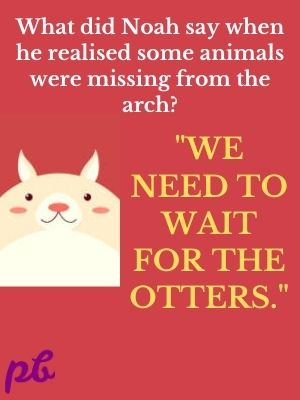 We need to wait for the otters