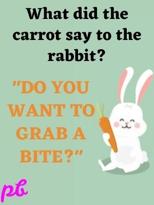 What did the carrot say to the rabbit