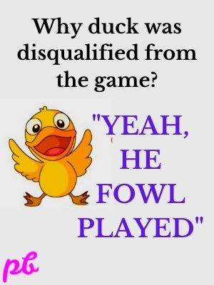 duck was disqualified