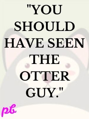 You should have seen the otter guy