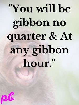 You will be gibbon no quarter & At any gibbon hour.