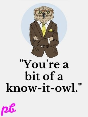You're a bit of a know-it-owl.