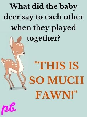 What did the baby deer say to each other when they played together  This is so much fawn!