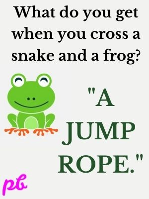 frog A jump rope.
