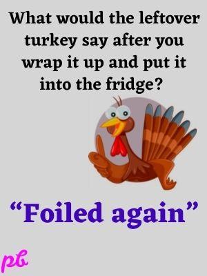Turkey Puns: