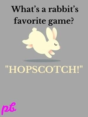 What's a rabbit's favorite game  Hopscotch!