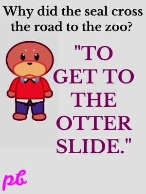 Why did the seal cross the road to the zoo