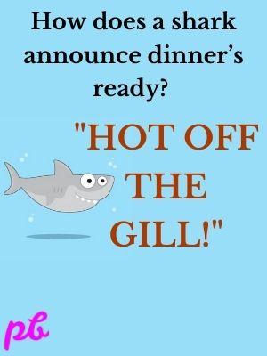 How does a shark announce dinner's ready