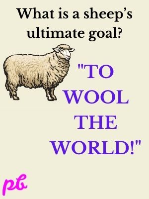 """To wool the world!"""