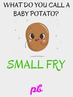 Baby Potato Puns