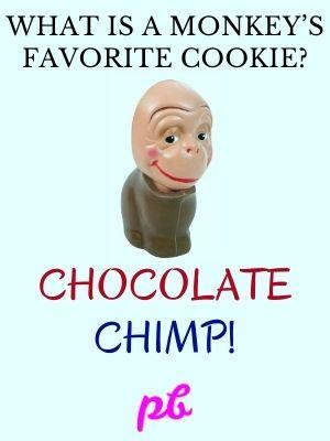 Chocolate Cookie Jokes