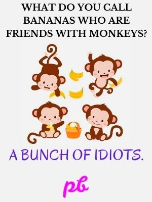 Friends Puns On Monkey