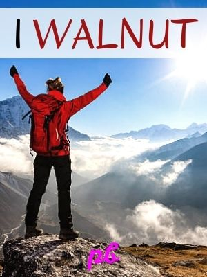 Inspiring Wal-Nut Jokes